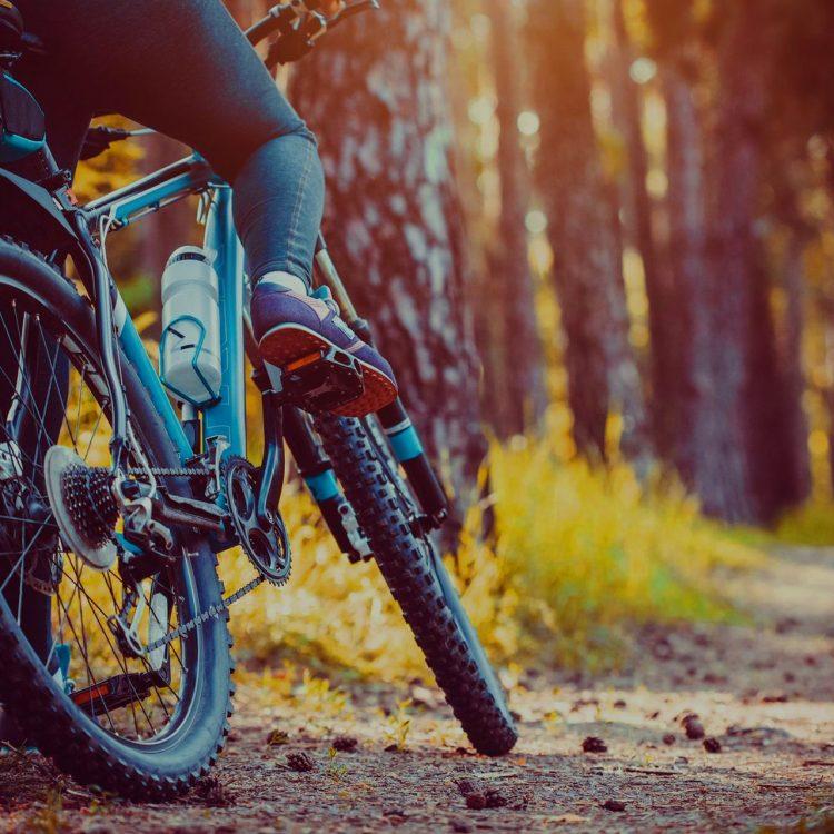 Ποδηλασία Πούλιθρα